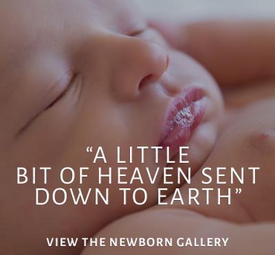 Rachel Falzon Photography, Newborn Photography