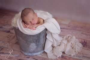 Beautifully posed in a bucket.