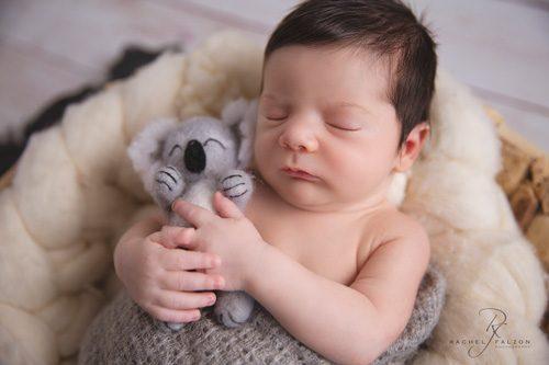 Baby cuddling a koala