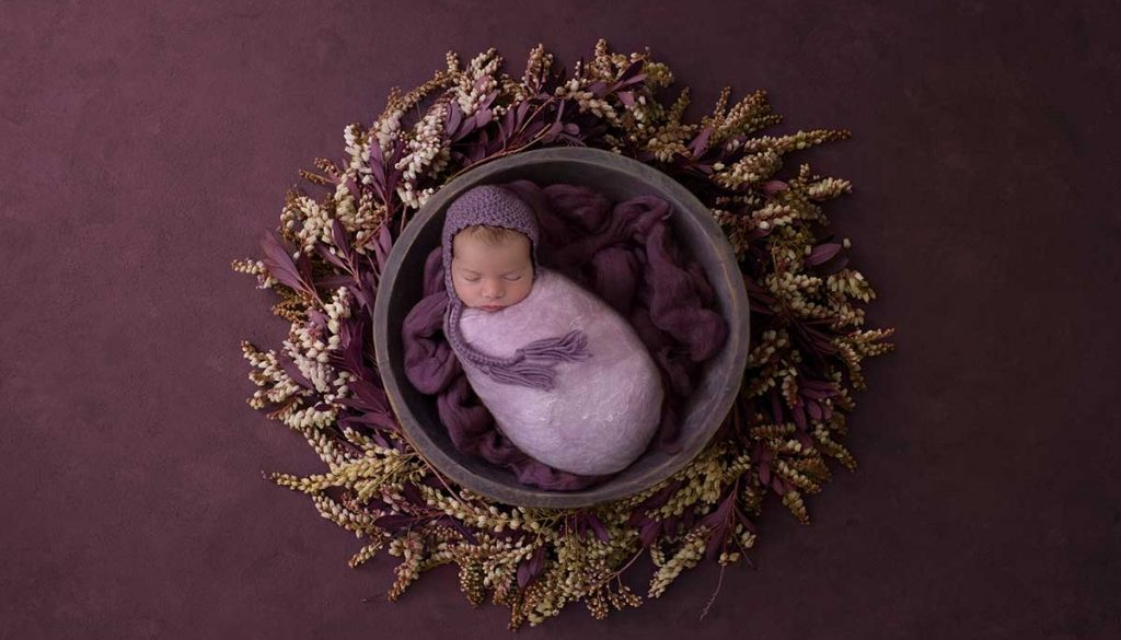 Newborn in a purple nest