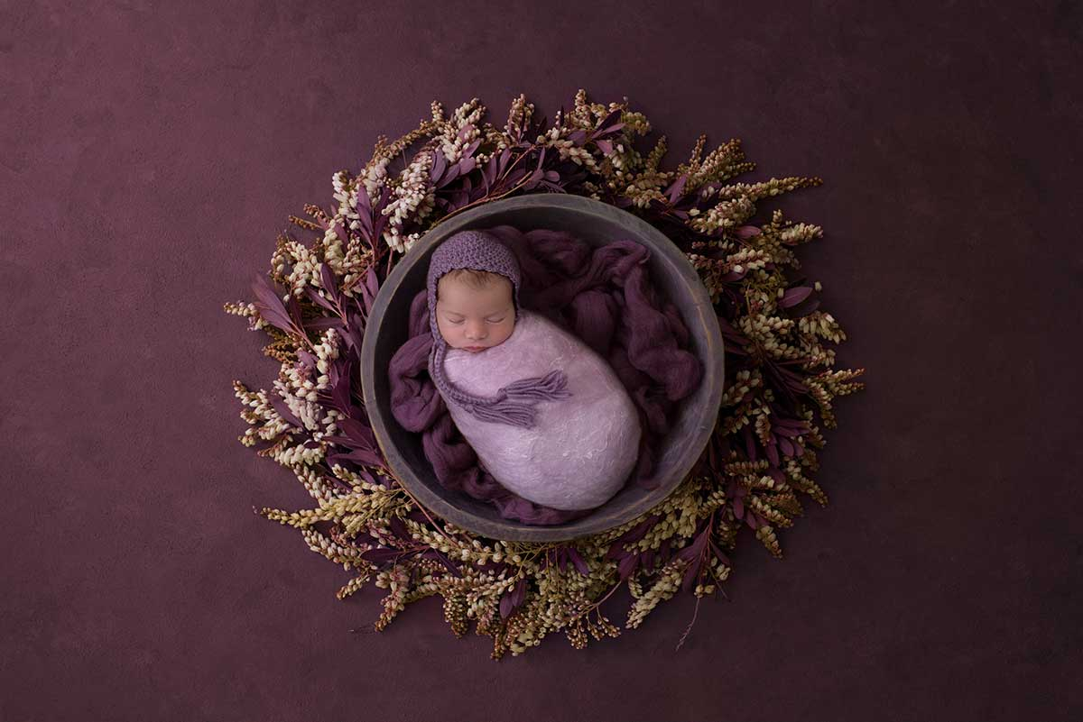 Newborn in a purple nest